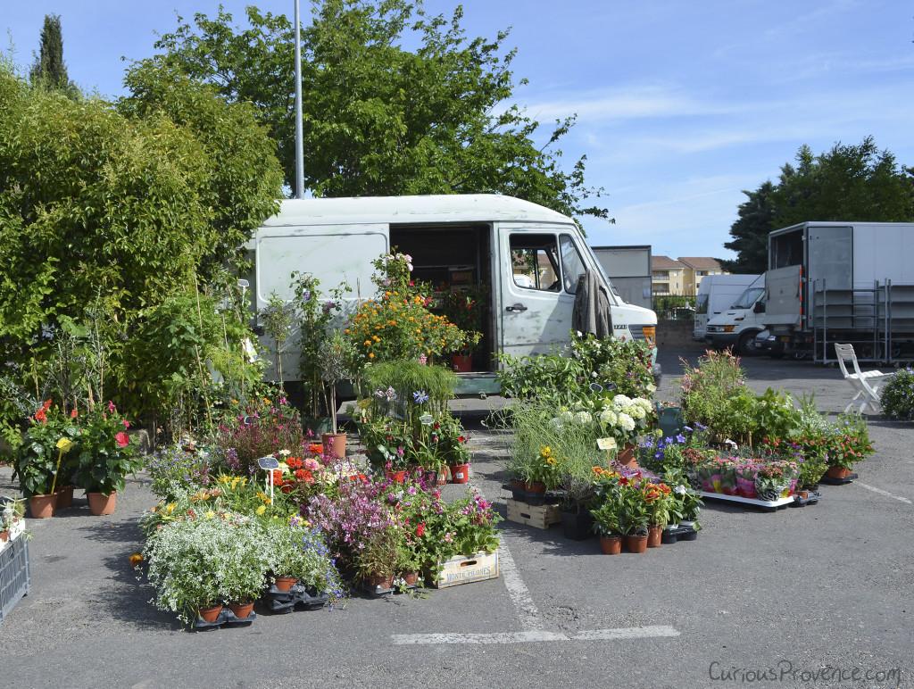 Flower Market Provence