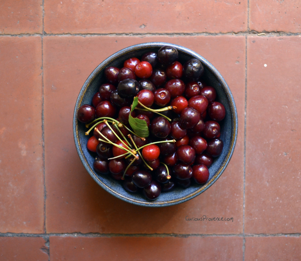 griotte cherries provence
