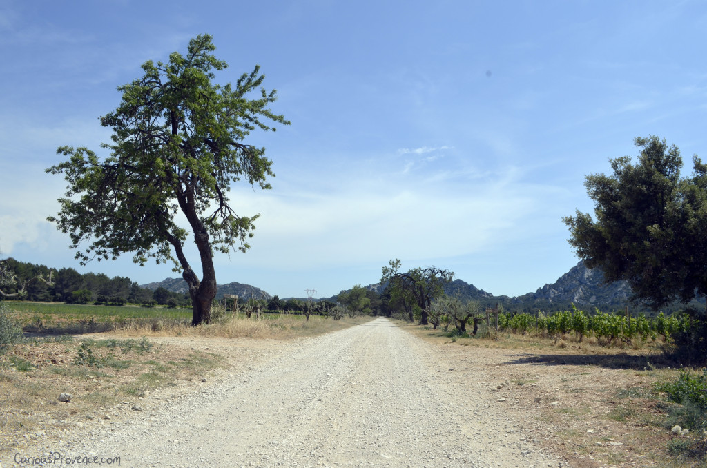 road terres blanches provence