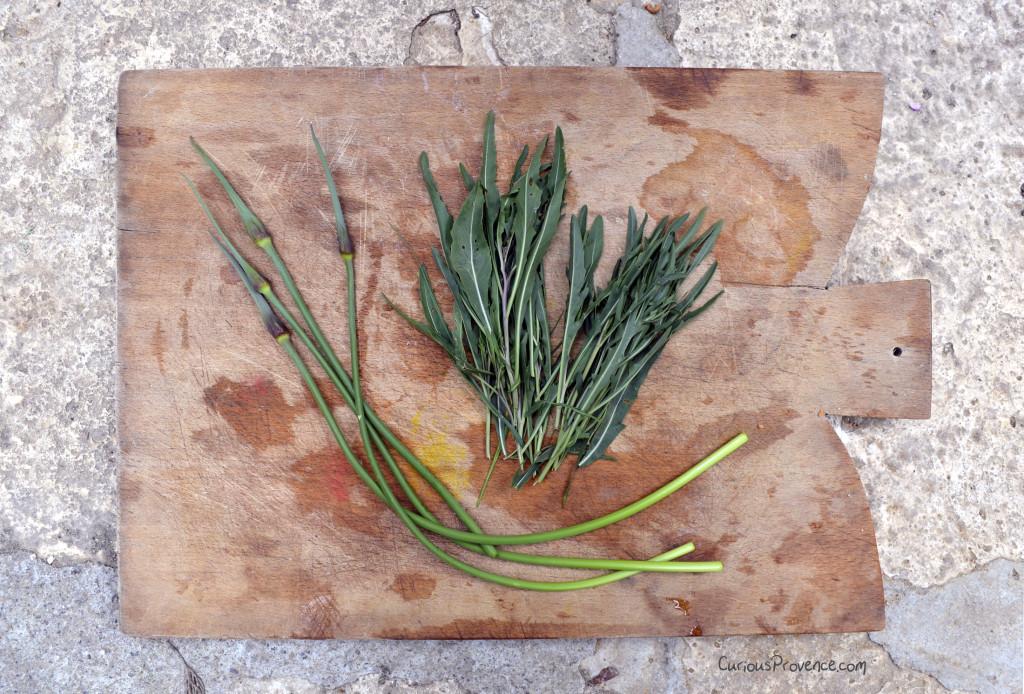 wild arugula provence
