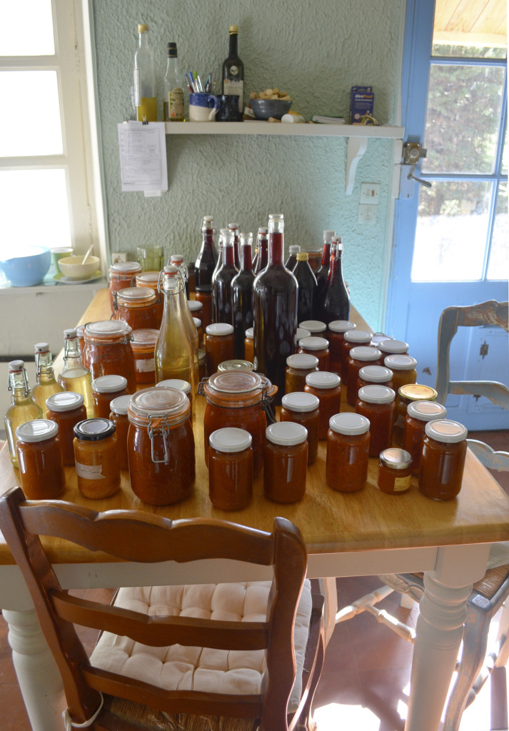 Preserves from the summer! Including: apricot jam, tomato sauce, tomato chutney, apple chutney, elderflower cordial and walnut wine