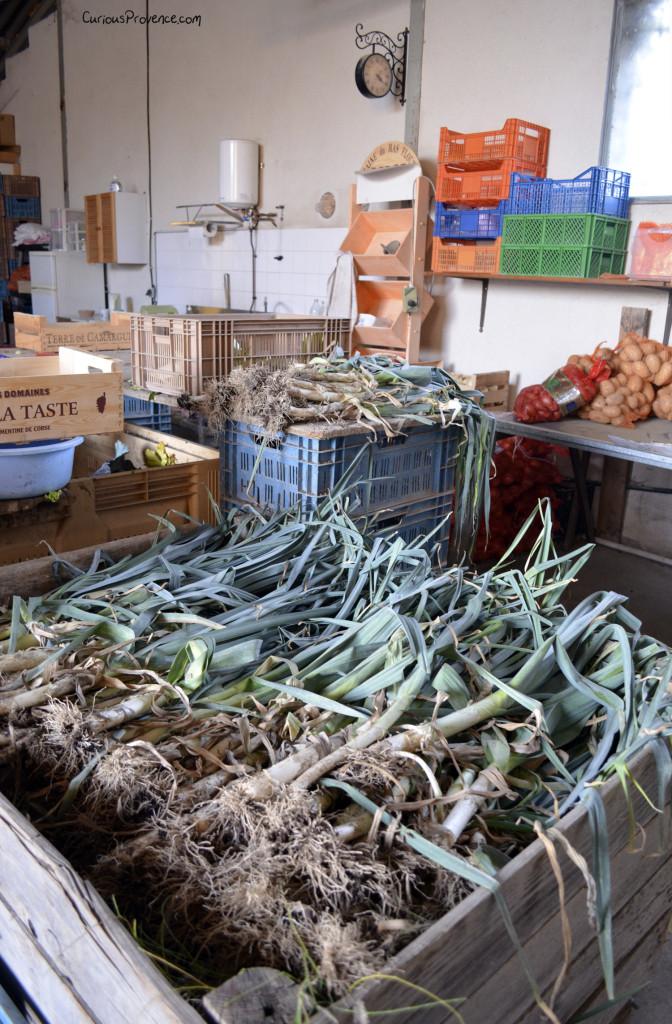 potager emilie cabannes provence