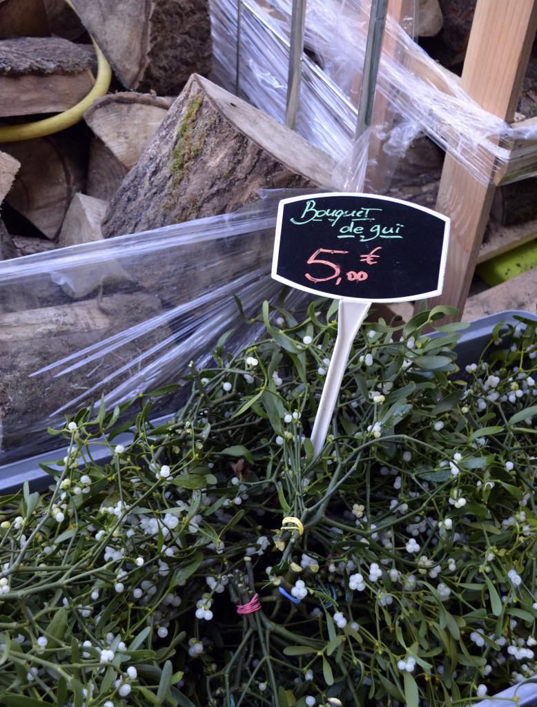 gui mistletoe avignon provence