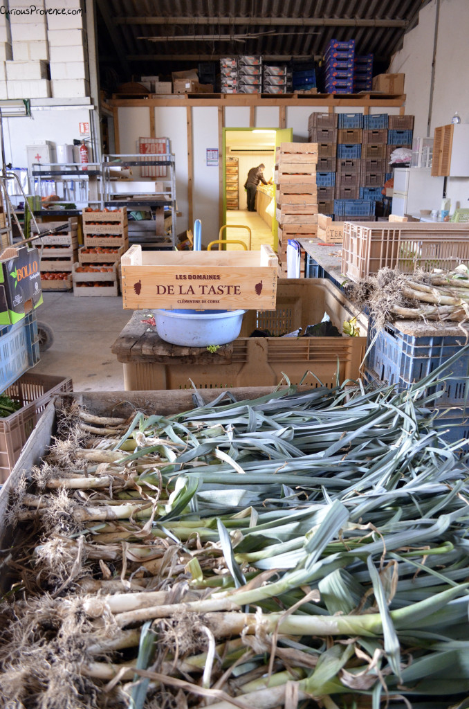 Farm shop provence