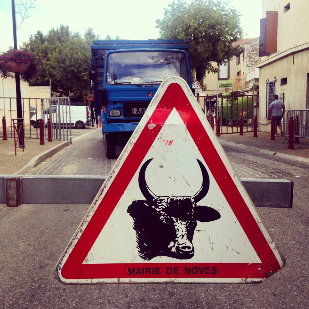 bull running provence