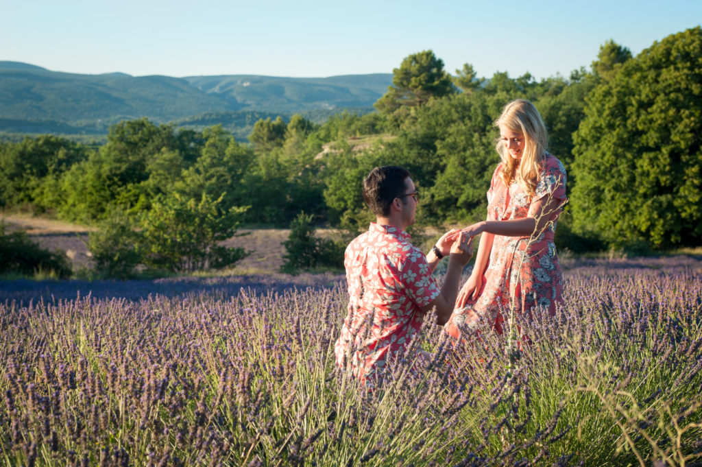 lavender field proposal curiousprovence