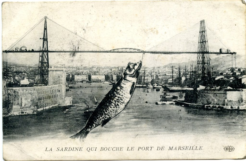 sardine of Marseille curious provence