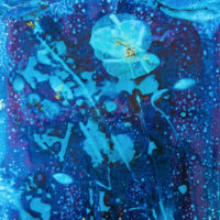cyanotype Ashley tinker