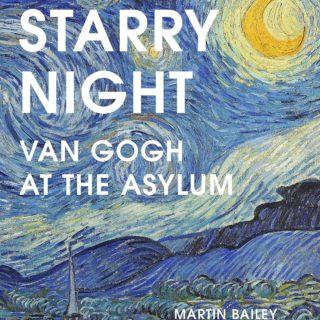 starry night Van Gogh at the asylum