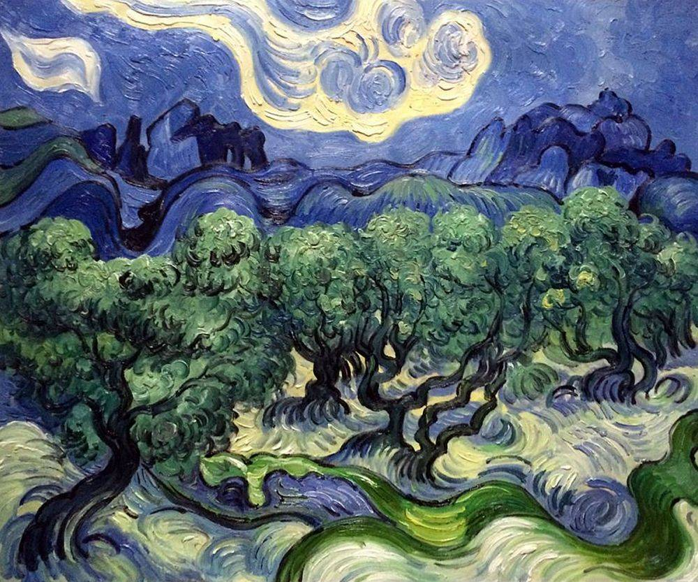 olive trees in provence by Van Gogh