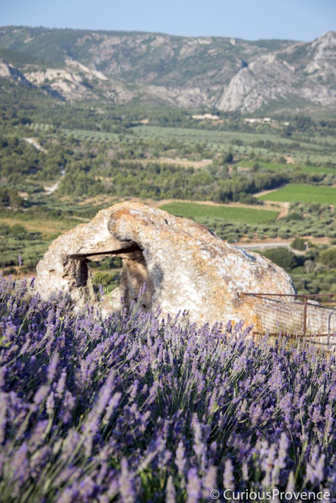 lavender les baux de provence by curiousprovence