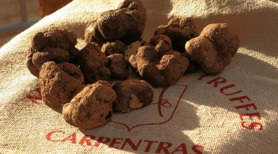 Carpentras marche au truffes