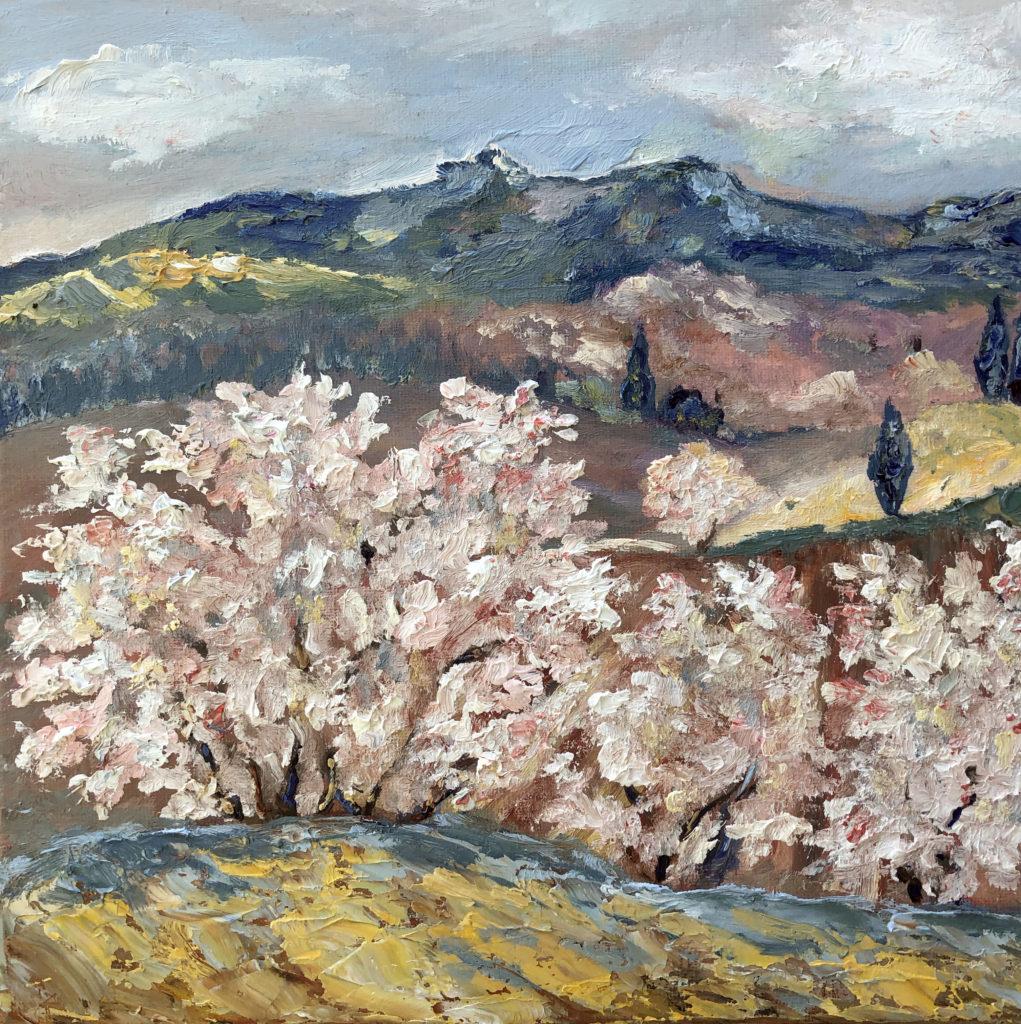 alpilles almond blossom