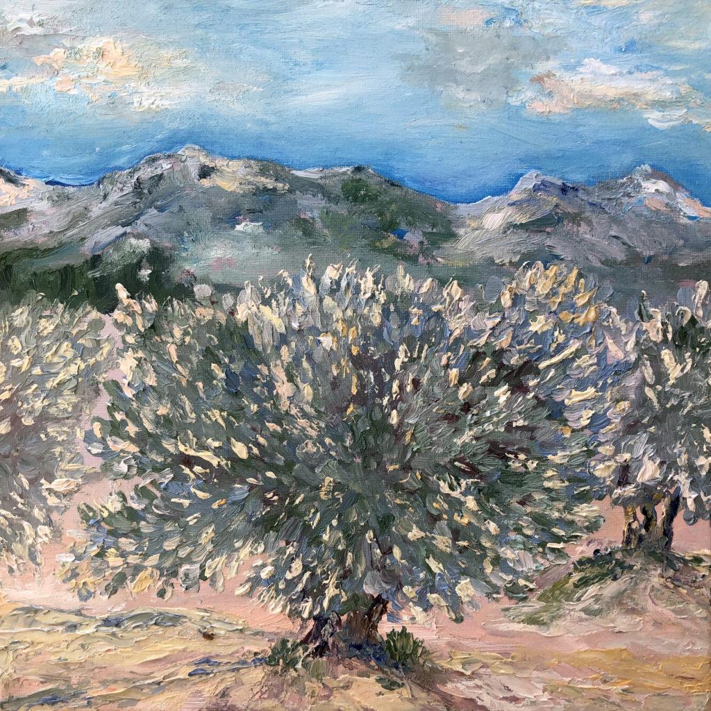 olive tree les baux de provence